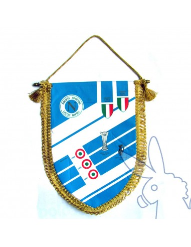 OFFICIAL PENNANT 1990/91